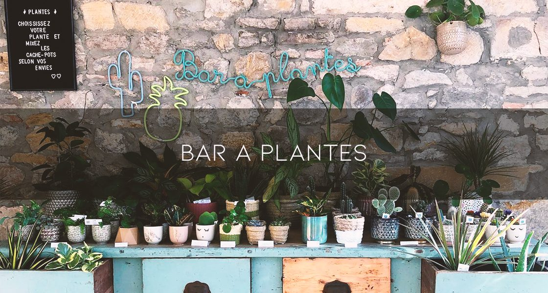 bar_a_plante